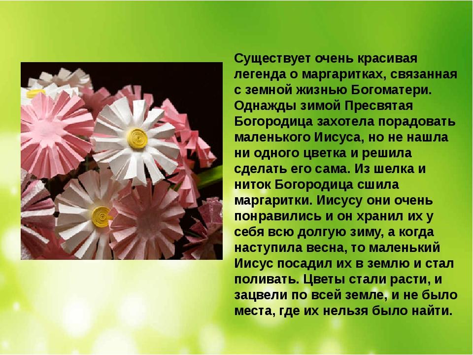 Существует очень красивая легенда о маргаритках, связанная с земной жизнью Бо...