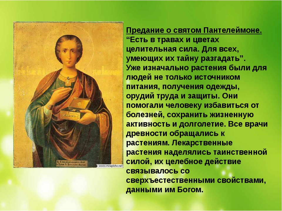 """Предание о святом Пантелеймоне. """"Есть в травах и цветах целительная сила. Для..."""