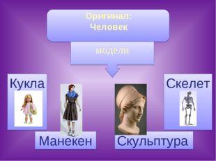 Оригинал: Человек Кукла Манекен Скелет Скульптура модели