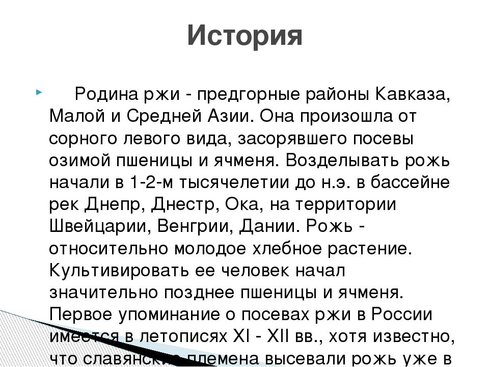 Родина ржи - предгорные районы Кавказа, Малой и Средней Азии. Она произошла...