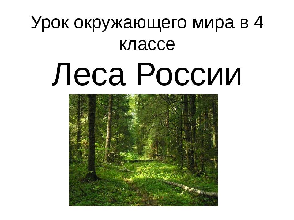 Урок окружающего мира в 4 классе Леса России