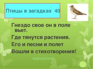 Птицы в загадках 40 Гнездо свое он в поле вьет. Где тянутся растения. Его и п