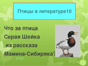 Птицы в литературе 10 Что за птица Серая Шейка из рассказа Мамина-Сибиряка? у