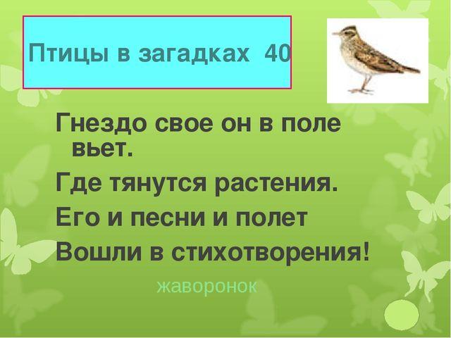Птицы в загадках 40 Гнездо свое он в поле вьет. Где тянутся растения. Его и п...