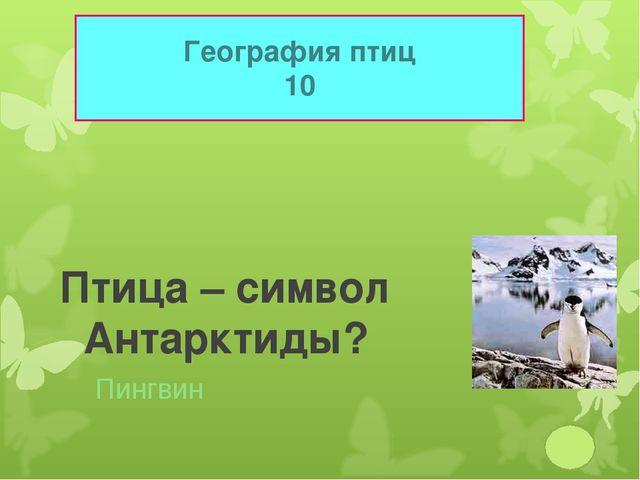 География птиц 10 Птица – символ Антарктиды? Пингвин