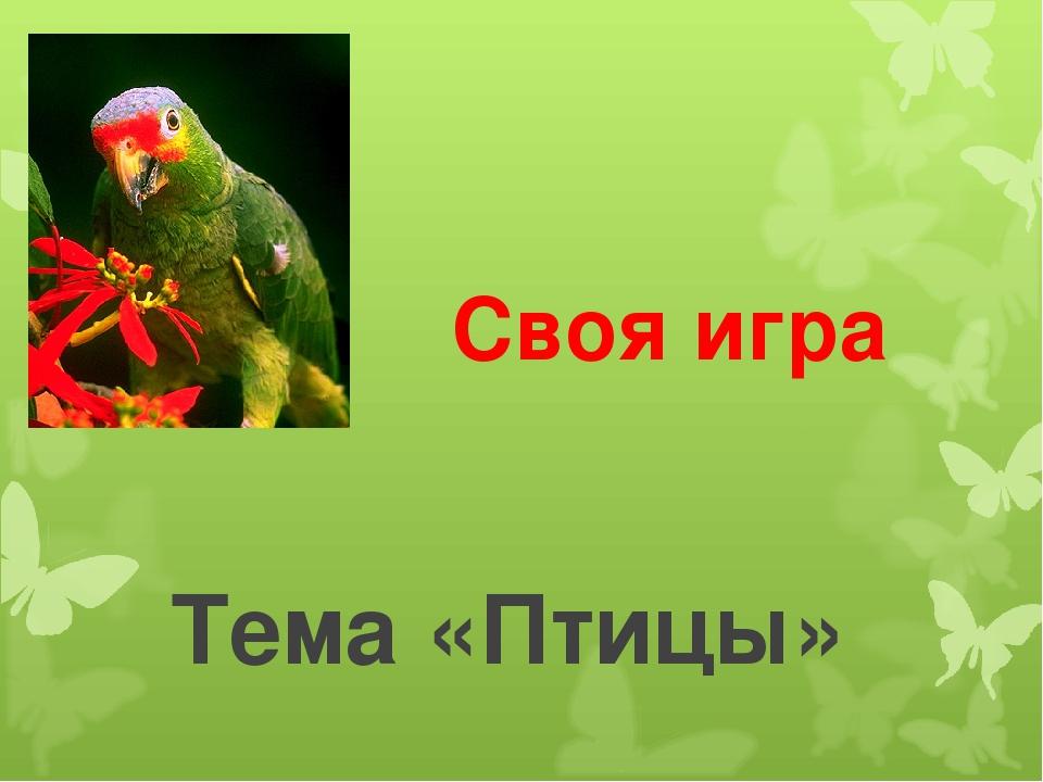 Своя игра Тема «Птицы»