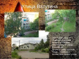 Улица Ватутина Небольшая улица в Орджоникидзевском районе, в Абашево. Протяну