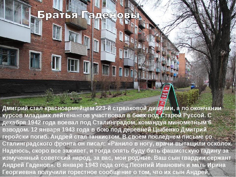 Дмитрий стал красноармейцем 223-й стрелковой дивизии, а по окончании курсов м...