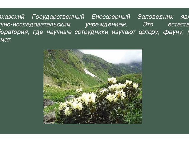 Кавказский Государственный Биосферный Заповедник является научно-исследовател...