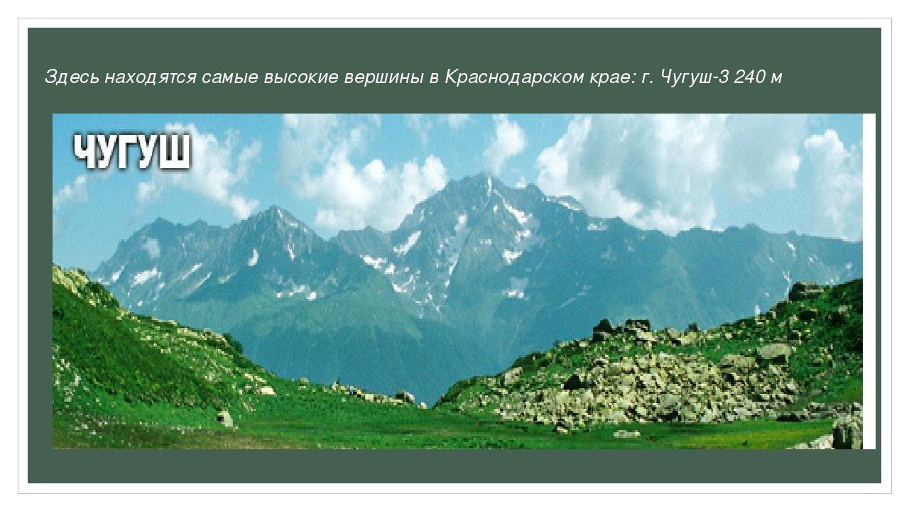 Здесь находятся самые высокие вершины в Краснодарском крае: г. Чугуш-3 240 м