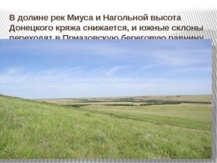 В долине рек Миуса и Нагольной высота Донецкого кряжа снижается, и южные скло