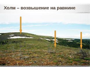 Холм – возвышение на равнине вершина склон подошва