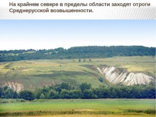 На крайнем севере в пределы области заходят отроги Среднерусской возвышенности.