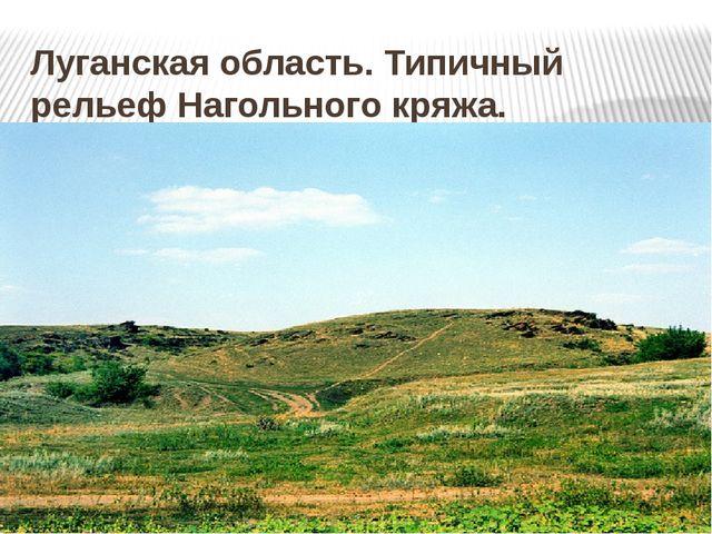 Луганская область. Типичный рельеф Нагольного кряжа.