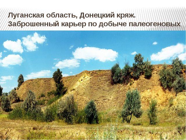 Луганская область, Донецкий кряж. Заброшенный карьер по добыче палеогеновых п...