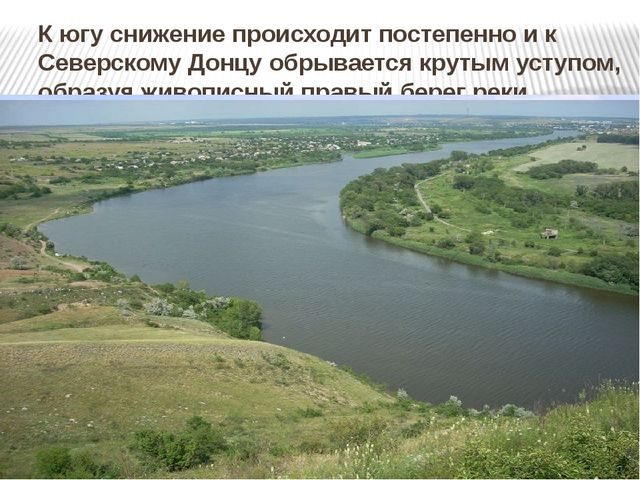К югу снижение происходит постепенно и к Северскому Донцу обрывается крутым у...