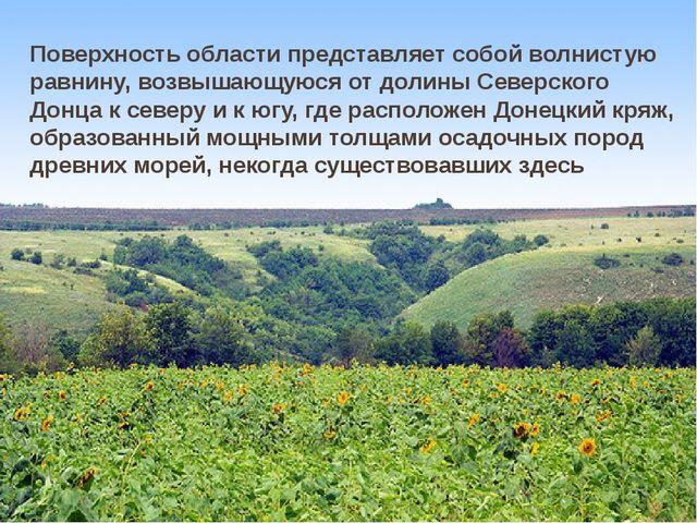 Поверхность области представляет собой волнистую равнину, возвышающуюся от д...