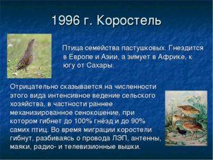 1996 г. Коростель Птица семейства пастушковых. Гнездится в Европе и Азии, а з