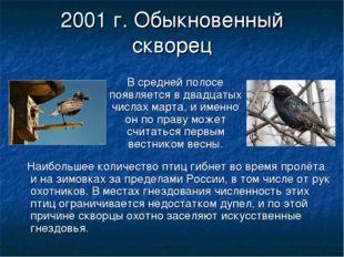 2001 г. Обыкновенный скворец В средней полосе появляется в двадцатых числах м