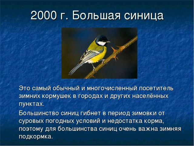 2000 г. Большая синица Это самый обычный и многочисленный посетитель зимних к...
