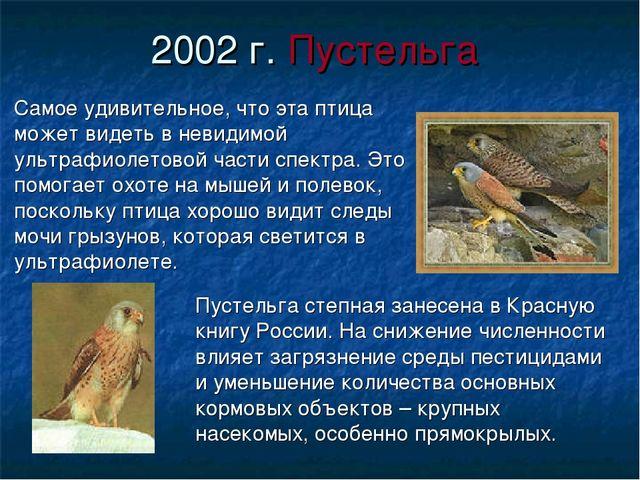 2002 г. Пустельга Самое удивительное, что эта птица может видеть в невидимой...