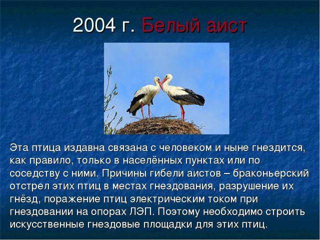 2004 г. Белый аист Эта птица издавна связана с человеком и ныне гнездится, ка...