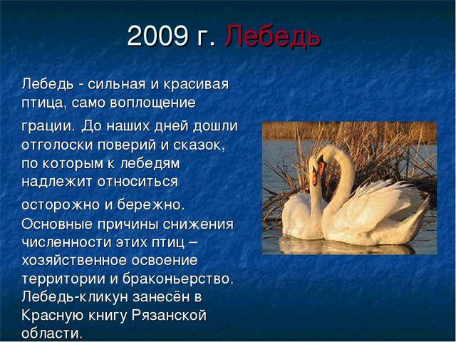 2009 г. Лебедь Лебедь - сильная и красивая птица, само воплощение грации. До...