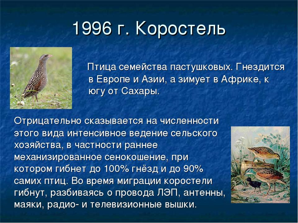 1996 г. Коростель Птица семейства пастушковых. Гнездится в Европе и Азии, а з...
