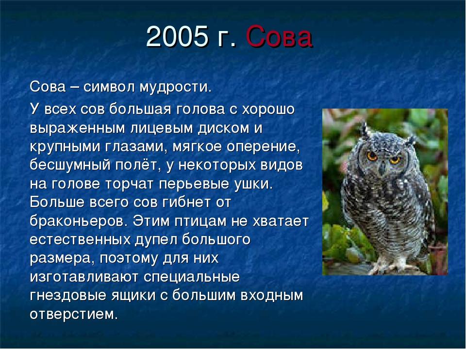 2005 г. Сова Сова – символ мудрости. У всех сов большая голова с хорошо выраж...