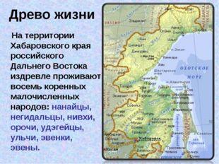 Древо жизни На территории Хабаровского края российского Дальнего Востока издр