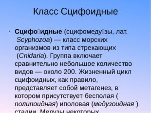 Класс Сцифоидные Сцифо́идные(сцифомеду́зы,лат.Scyphozoa)— класс морских о