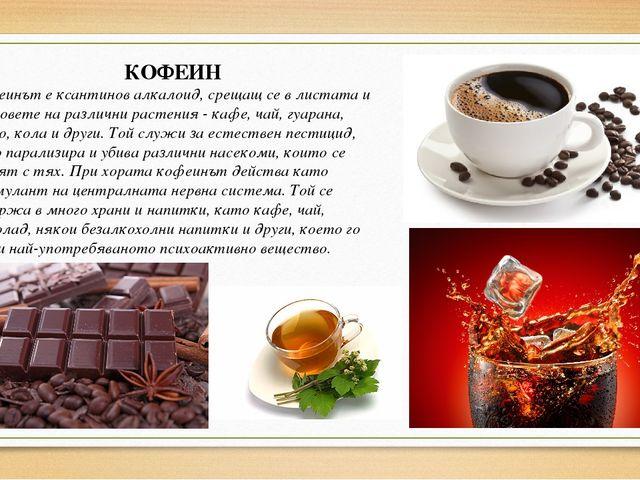 КОФЕИН Кофеинът е ксантинов алкалоид, срещащ се в листата и плодовете на разл...