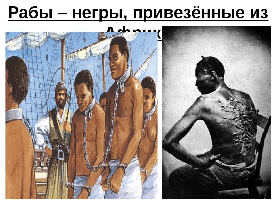 Рабы – негры, привезённые из Африки