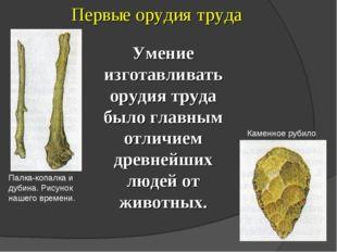 Первые орудия труда Палка-копалка и дубина. Рисунок нашего времени. Каменное