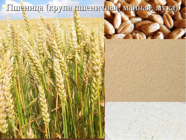 Пшеница (крупа пшеничная, манная, мука)
