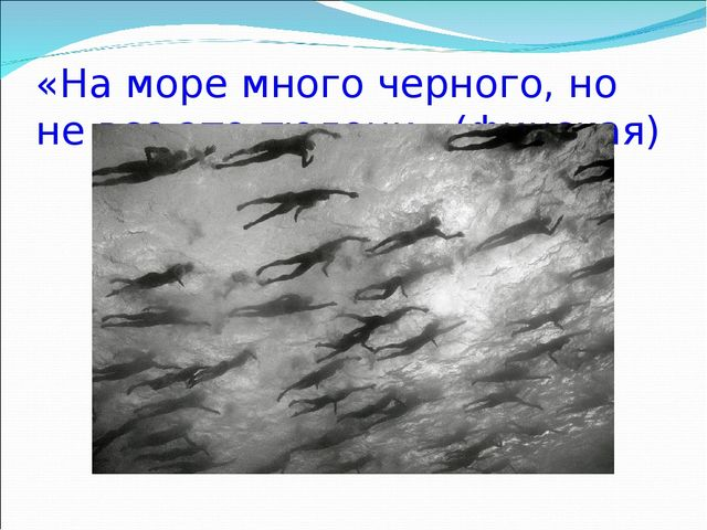 «На море много черного, но не все это тюлени» (финская)
