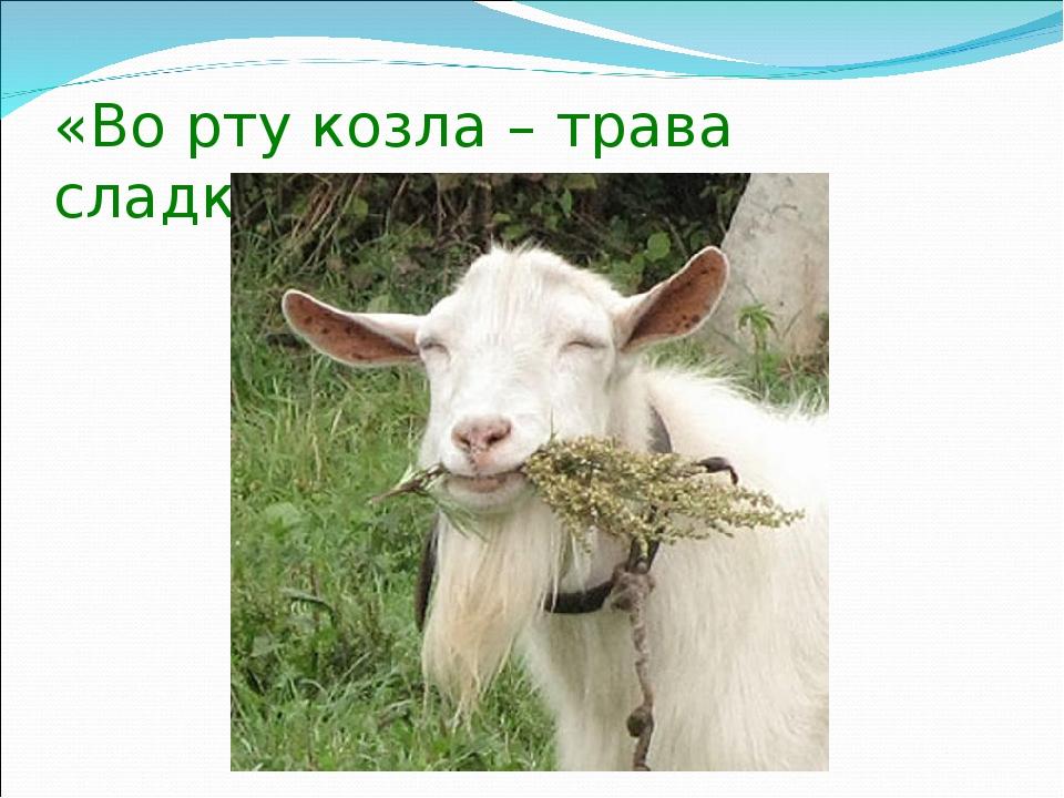 «Во рту козла – трава сладкая» (персидская)