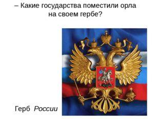 Герб России – Какие государства поместили орла на своем гербе?