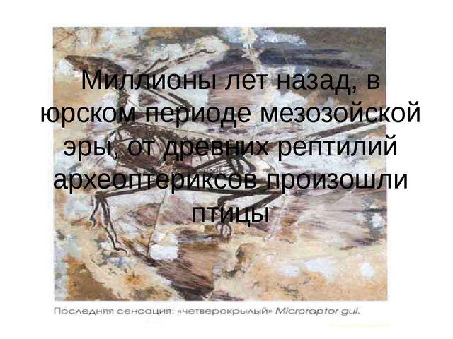 Миллионы лет назад, в юрском периоде мезозойской эры, от древних рептилий арх...