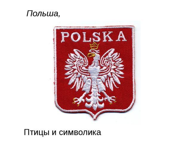 Польша, Птицы и символика