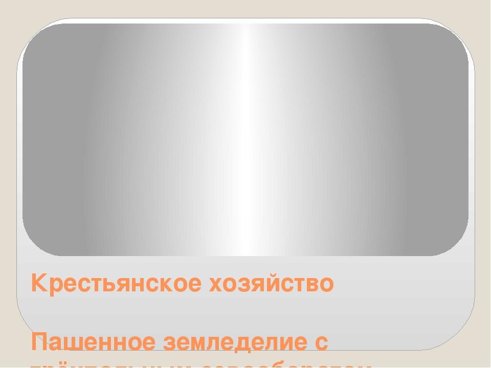 Крестьянское хозяйство Пашенное земледелие с трёхпольным севооборотом Основны...