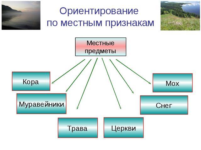 Ориентирование по местным признакам Местные предметы Трава Церкви Мох Кора Му...
