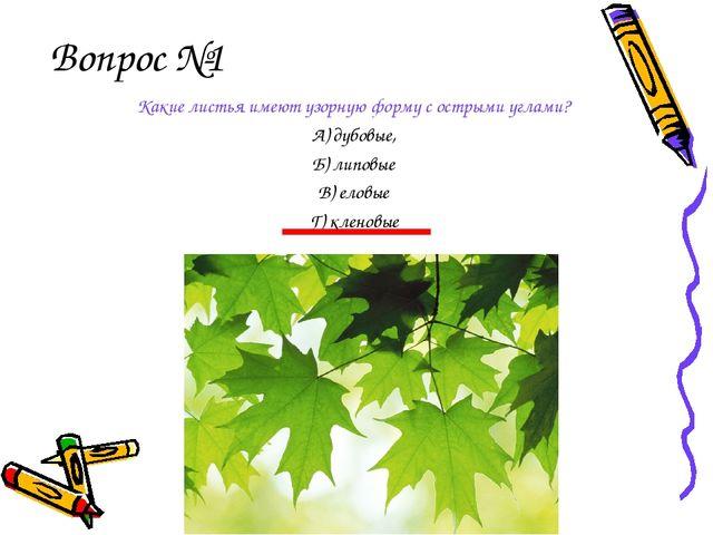 Вопрос №1 Какие листья имеют узорную форму с острыми углами? А) дубовые, Б) л...