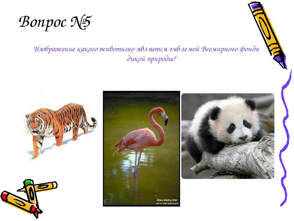 Вопрос №5 Изображение какого животного является эмблемой Всемирного фонда дик...