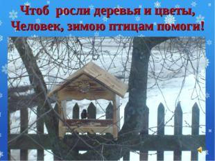 Чтоб росли деревья и цветы, Человек, зимою птицам помоги!