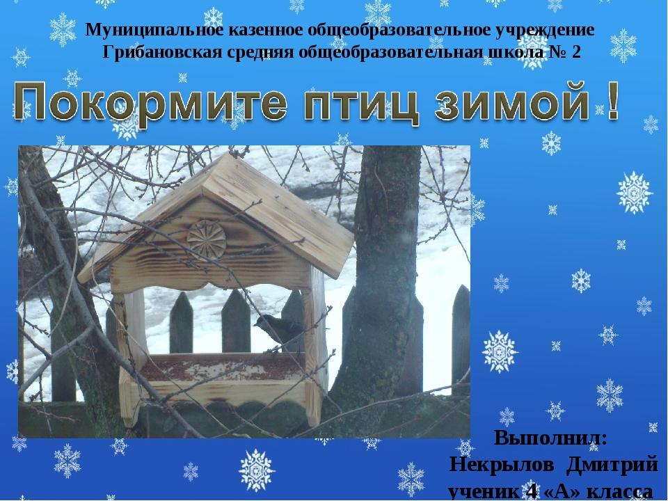 Выполнил: Некрылов Дмитрий ученик 4 «А» класса Муниципальное казенное общеобр...