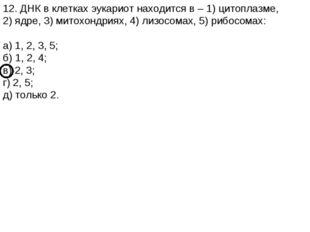 12. ДНК в клетках эукариот находится в – 1) цитоплазме, 2) ядре, 3) митохондр
