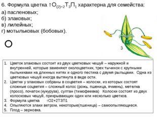 6. Формула цветка ↑О(2)+2Т3П1 характерна для семейства: а) пасленовых; б) зла