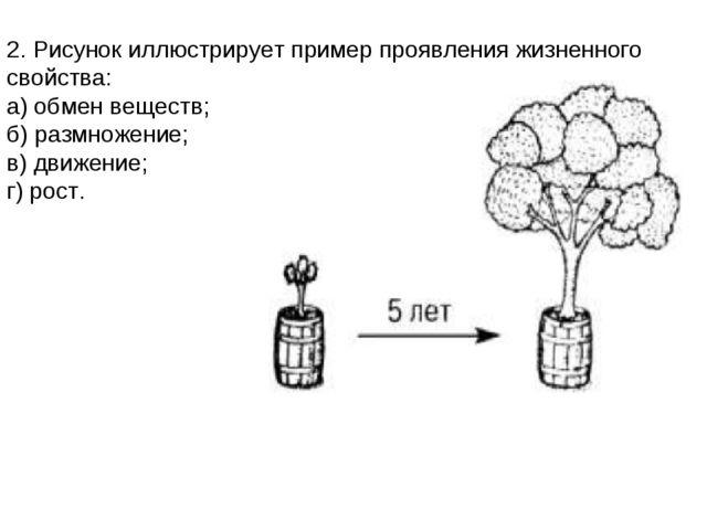 2. Рисунок иллюстрирует пример проявления жизненного свойства: а) обмен вещес...