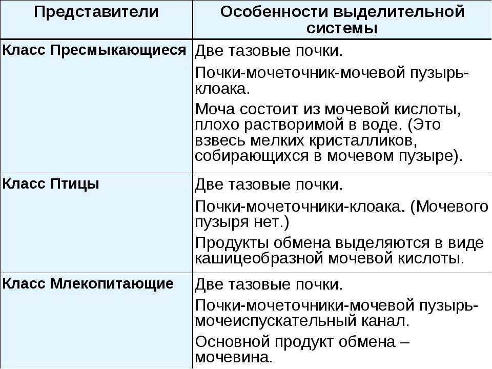 ПредставителиОсобенности выделительной системы Класс ПресмыкающиесяДве тазо...